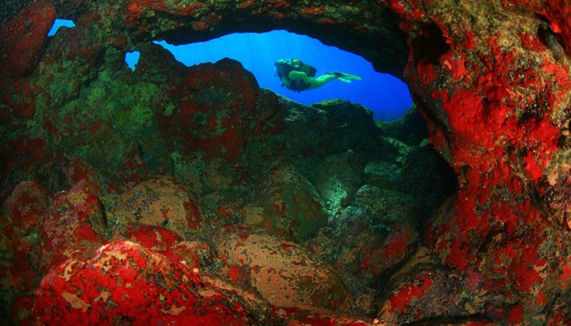 Diving in El Hierro
