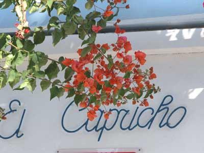 Apartamentos El Capricho, San Bartolomé de Tirajana