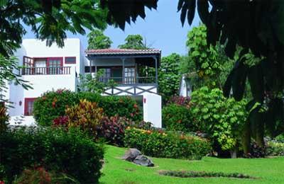 Hotels in la gomera for Jardin tecina gomera