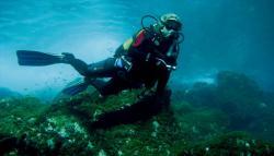 Diving La Gomera