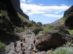 Climbing & Hiking in Tenerife