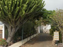 Aloe Park, Tenerife