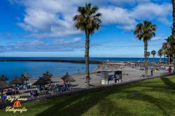 Playa del Camisón Beach, Arona
